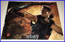 JEREMY RENNER Signed 11x14 AVENGERS HAWKEYE Photo IN PERSON Autograph JSA COA